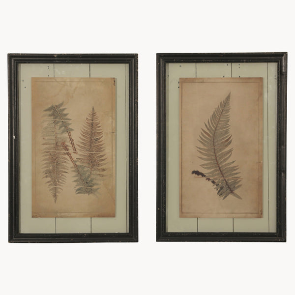 Brookby Prints - set of 2
