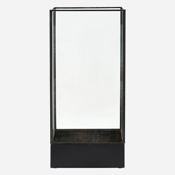 Display box, Plant, Black antique