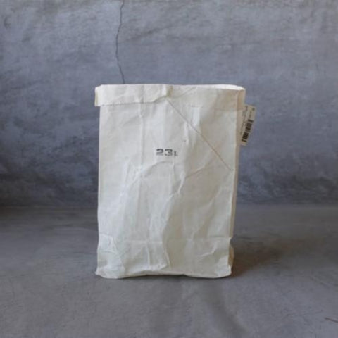 White Grocery Bag