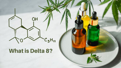 From CBD to Delta 8 – Why Delta 8 CBD is the Way Forward