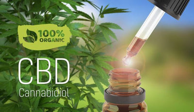 What is the Best Organic CBD Oil to Buy Online?