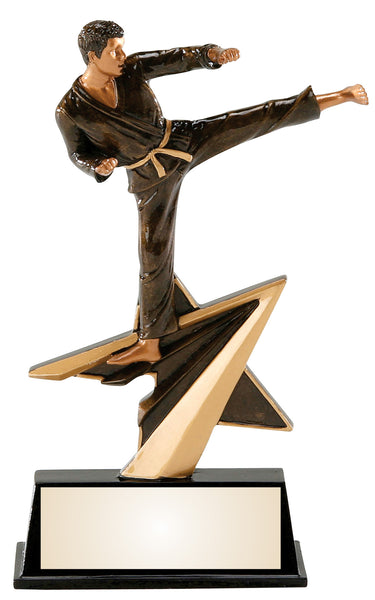 Karate Star Power Resin Figure Award