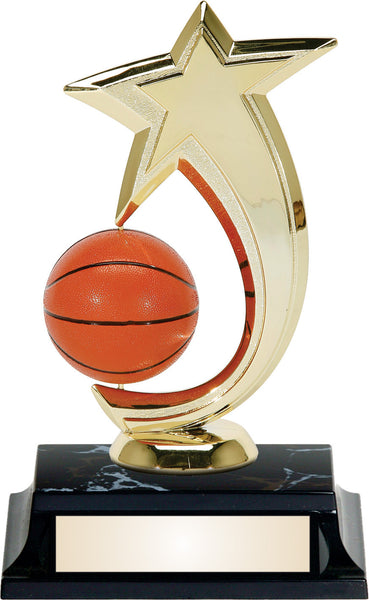 Basketball Spin Shooting Star Award