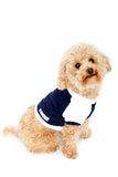 Shop quality dog clothing