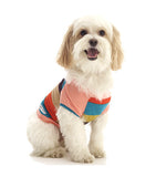 penn + pooch's best-selling raglan dog tee (coral + stripe) - on model view