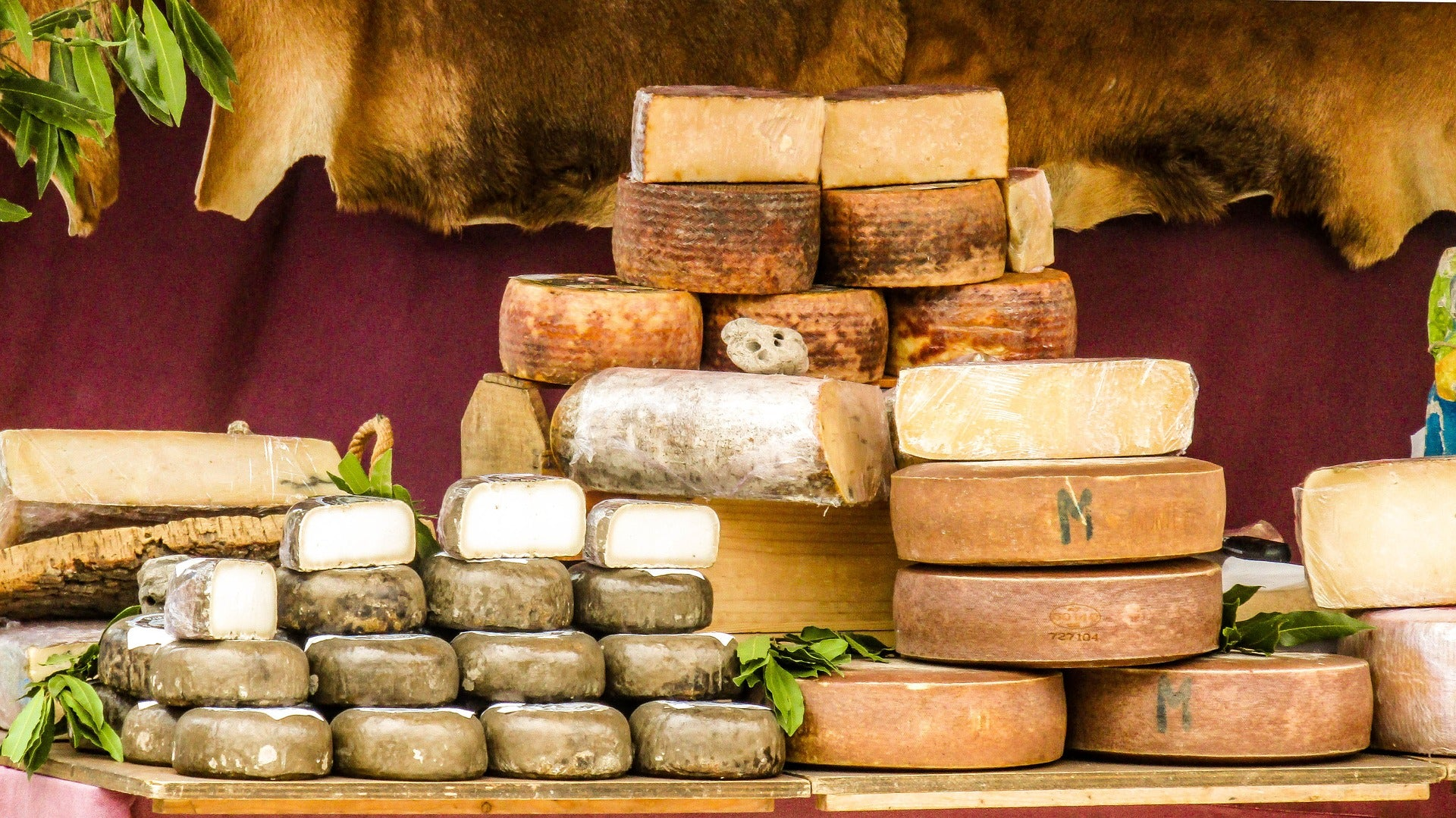 The Most Popular Dutch Cheeses
