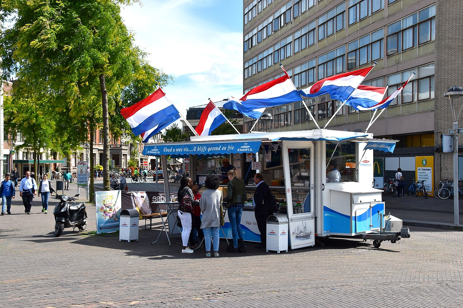 the best place to eat fish in the Netherlands