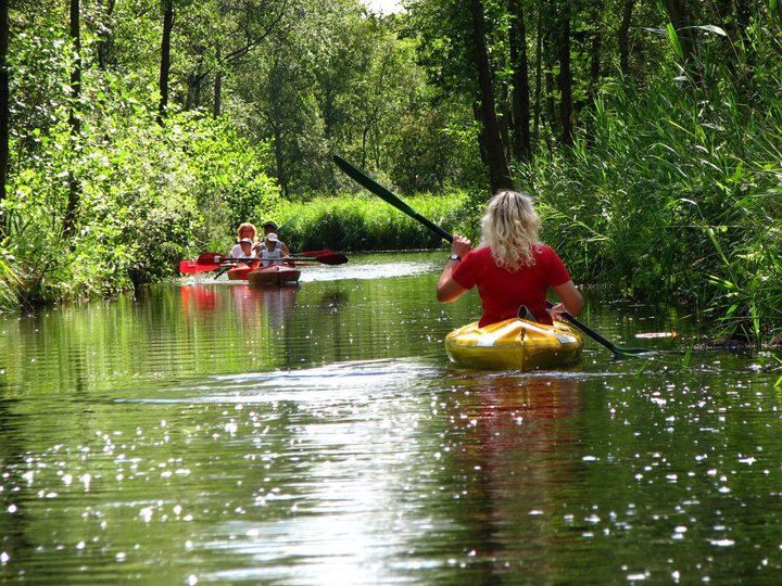 image of a woman kayaking through national park weerribben wieden with tulip day tours