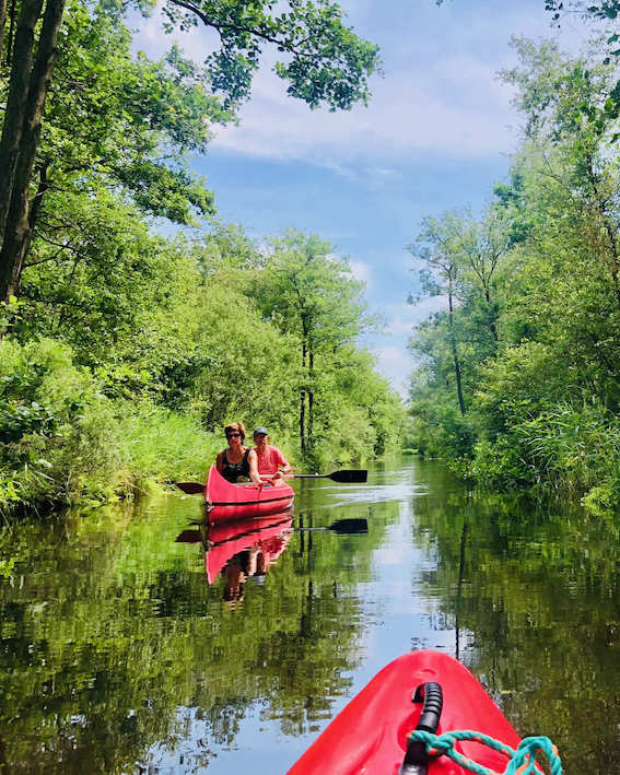 Explore National Park by Kayak