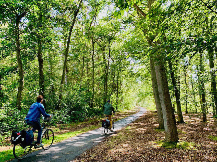 a image of a man and a woman cycling through the forest of National Park the Dunes in Texel