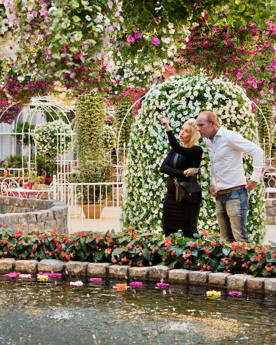 an image of a couple that is admiring the flowers hanging from the ceiling in the greenhouse of the Orchid Farm