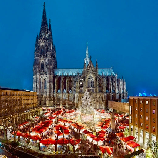 Cologne Cathedral and markets tulip day tours