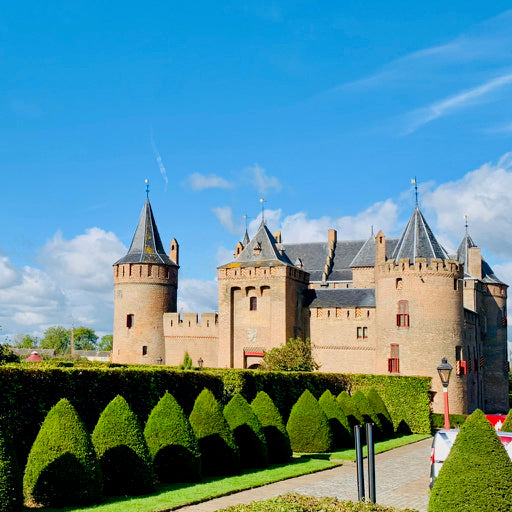 Discover Amsterdam Castle with Tulip Day Tours