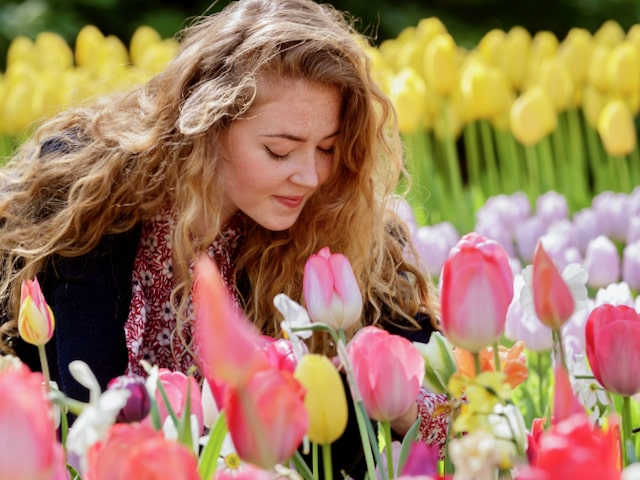 a woman with long, blond hair sitting between pink, yellow and purple flowers in Keukenhof tulip gardens in holland