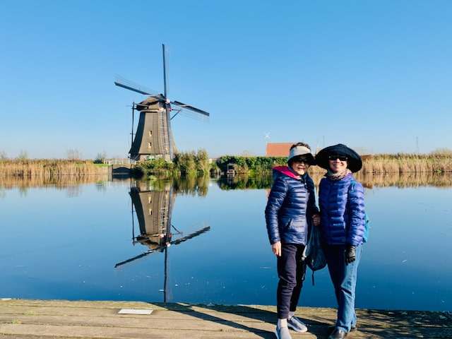 public tour to kinderdijk windmills where you are surrounded by windmills with tulip day tours