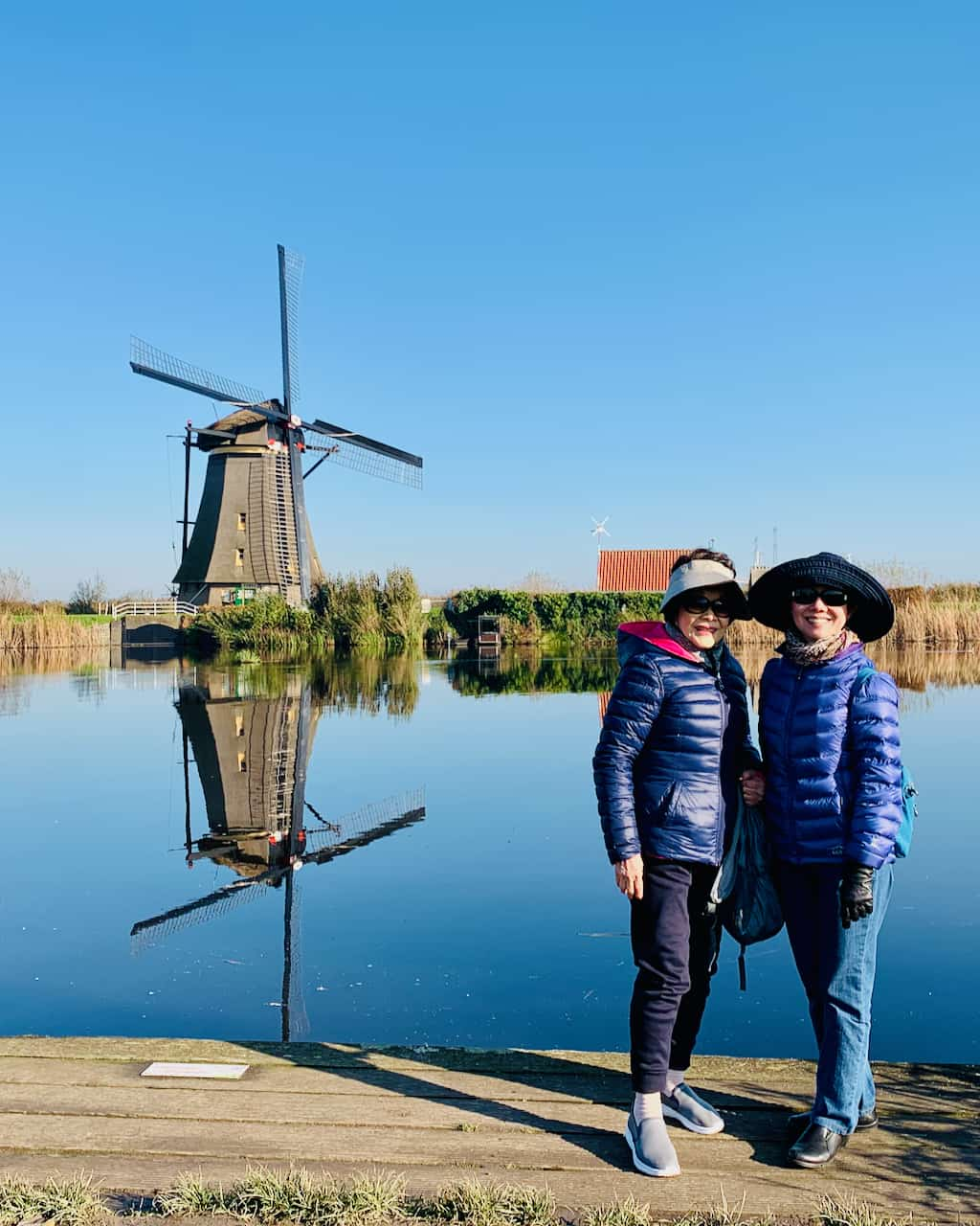 Kinderdijk windmills in spring with Tulip Day Tours