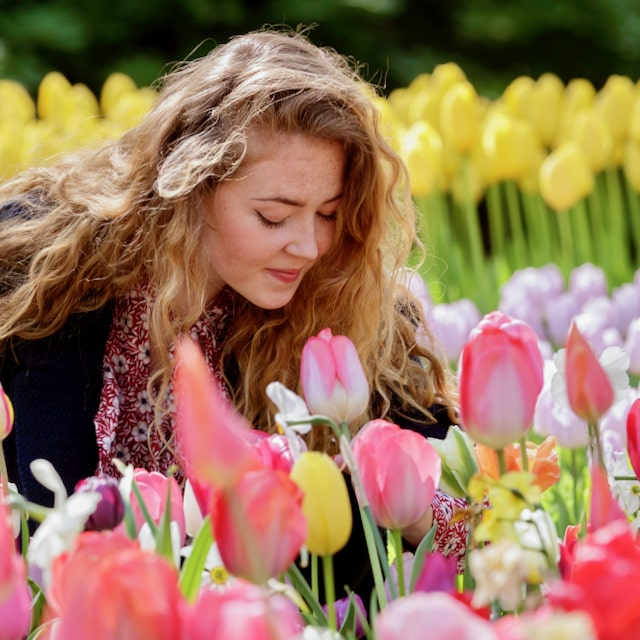 a girl with very long curly hair sitting in the flower fields of Keukenhof spring flower gardens
