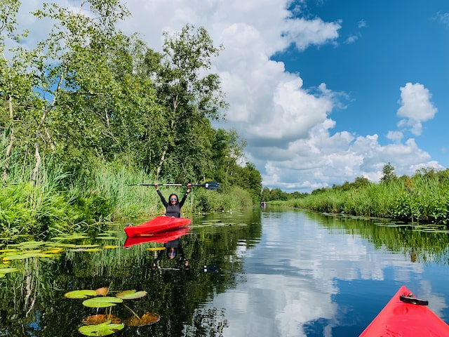 a woman on private tour enjoying a kayak tour in national park wieden holland