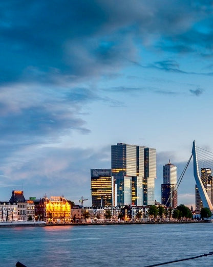 Skyline of Rotterdam with Tulip Day Tours