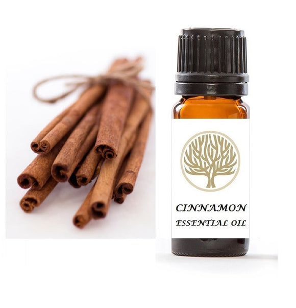 Cinnamon Essential Oil 10ml - ekoface