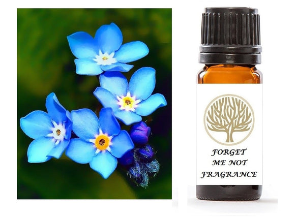 Forget Me Not Fragrance Oil 10ml - ekoface