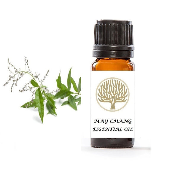 May Chang Essential Oil 10ml - ekoface