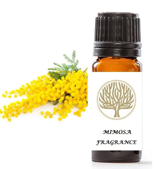 Mimosa Fragrance Oil 10ml - ekoface