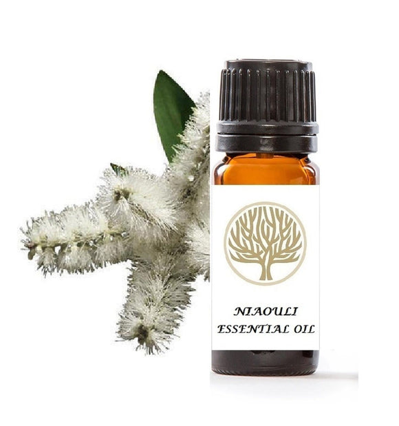 Niaouli Essential Oil 10ml - ekoface