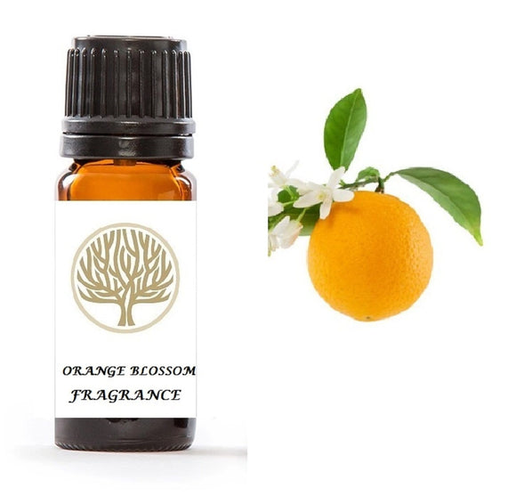 Orange Blossom Fragrance Oil 10ml - ekoface