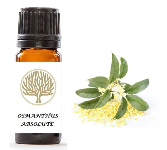 Osmanthus Absolute - ekoface