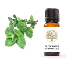 Peppermint Essential Oil 10ml - ekoface