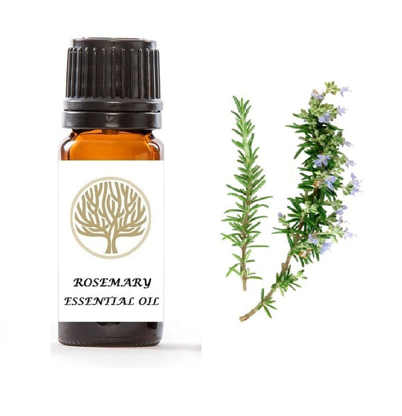 Rosemary Essential Oil 10ml - ekoface