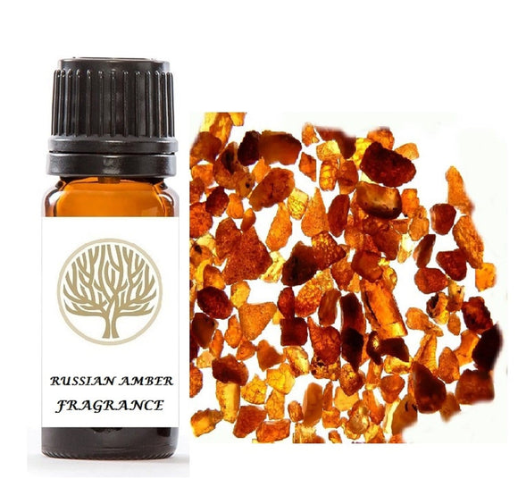 Russian Amber Fragrance Oil 10ml - ekoface