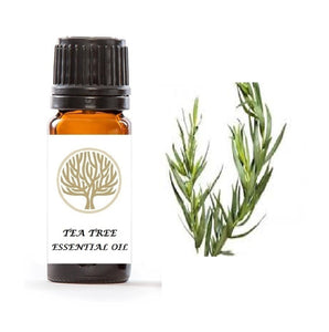 Tea Tree Essential Oil 10ml - ekoface