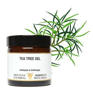 Tea Tree Gel 60ml - ekoface