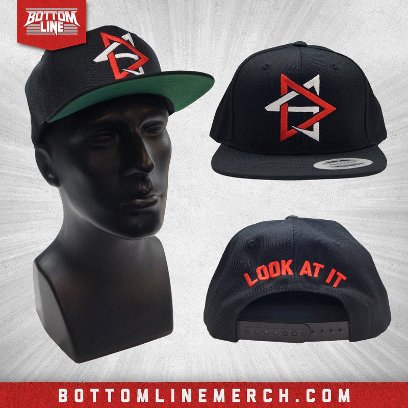 "David Starr ""Look At It"" Snapback"