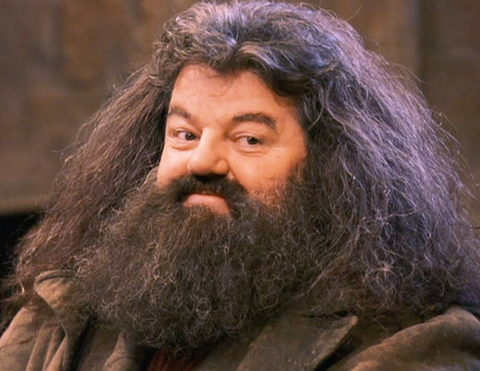 By Hagrids Beard!