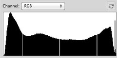 histogram for digital tintypes
