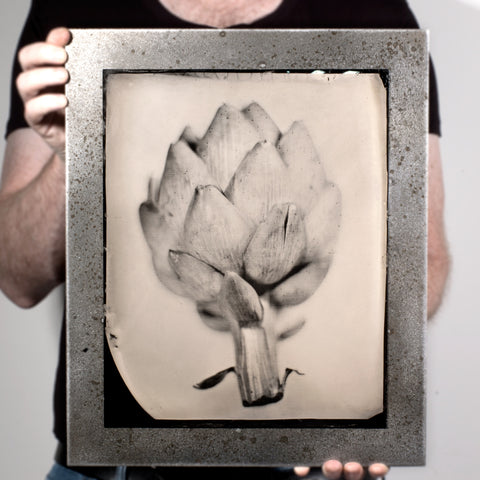 Industrial Produce | Artichoke - A Tintype Still Life