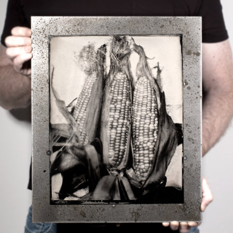 Industrial Produce | Corn - A Tintype Sill Life