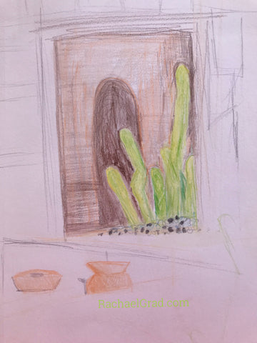 drawings in mexico Artist Rachael Grad sketches Cactus plants cacti urns mexican