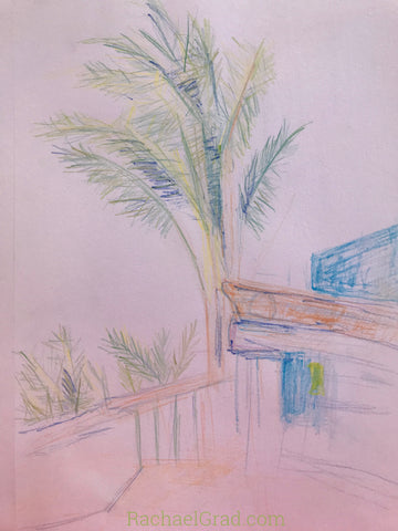 drawings in mexico Artist Rachael Grad palm trees sketches