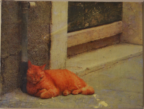 Sleeping Calle Cat #1, Dorsoduro, Venice, Italy, Mixed Media on Panel, 2010