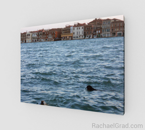 Art Print - 2 Dogs in the Water, Giudecca Canal, Venice, Italy-Animal Series-Canadian Artist Rachael Grad