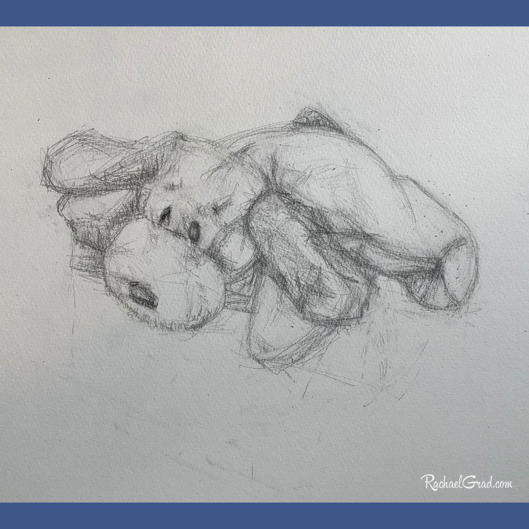 sweet dog toy resting drawing in pencil by Toronto Artist Rachael Grad