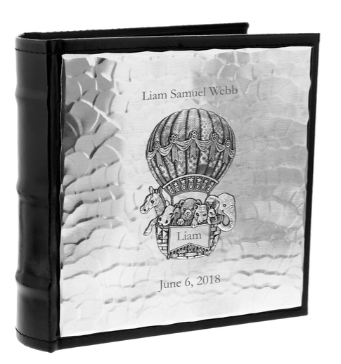 Baby Zoo Balloon Photo Album 🇺🇸