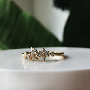 The Esmerelda Cluster Ring