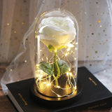 Rose In A Glass Dome Light For Home Decor With Wooden Base