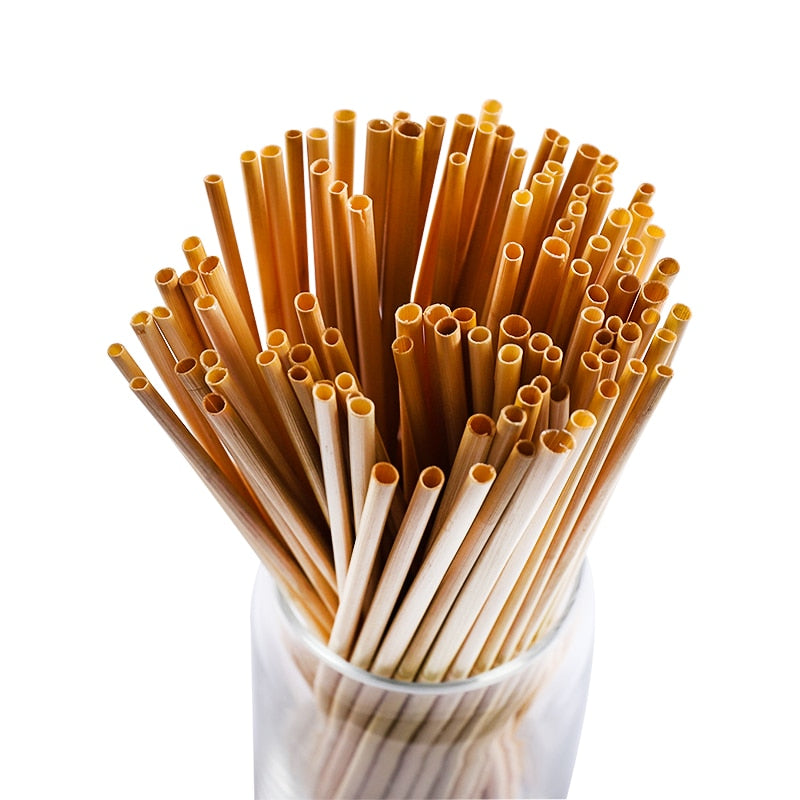 1,000 Wheat natural biodegradable straws, ECO Friendly