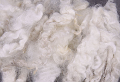 Washed English Leicester Fleece
